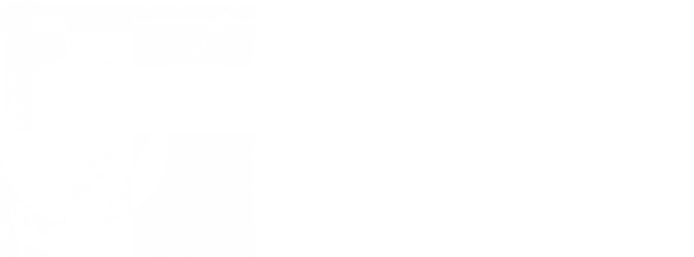 Mars Rover Design Team